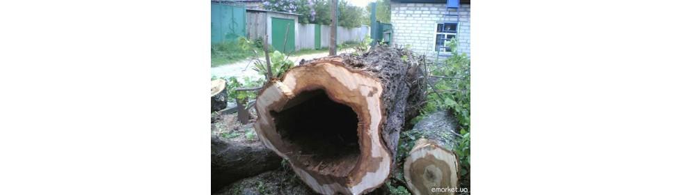 Спил и обрезка деревьев