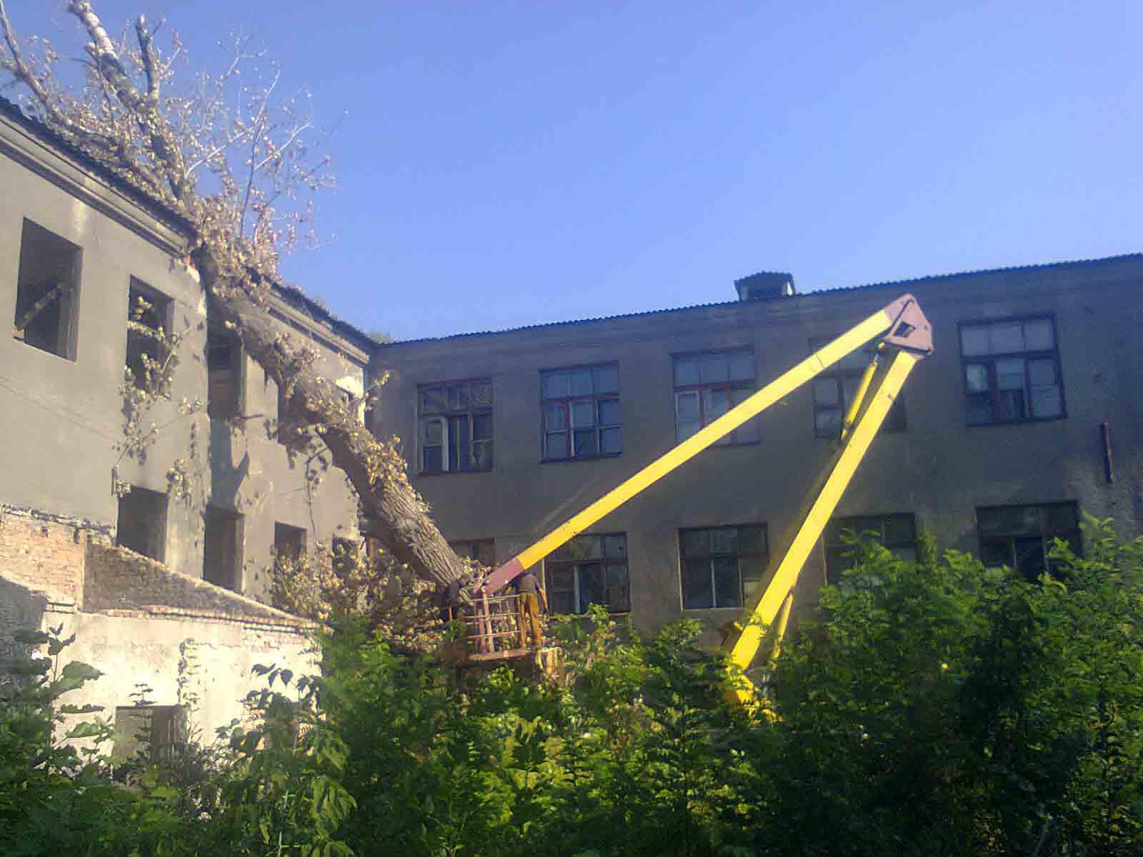 Разборка по частям упавшего тополя после бури с крыши здания